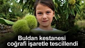 Bursa'nın şekerinde kullanılan Buldan kestanesi coğrafi işaretle tescillendi