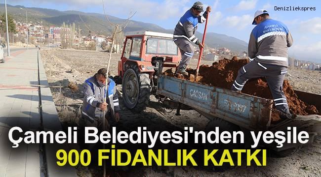 Çameli Belediyesi'nden yeşile 900 fidanlık katkı
