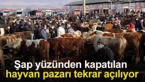 Şap yüzünden kapatılan hayvan pazarı tekrar açılıyor