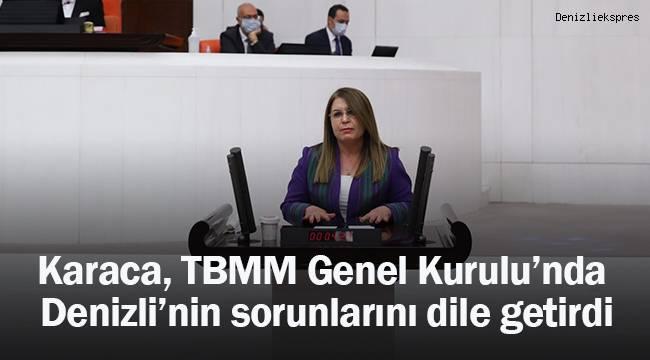 Gülizar Biçer Karaca, TBMM Genel Kurulu'nda Denizli'nin sorunları hakkında konuştu