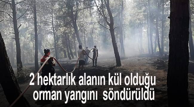 2 hektarlık alanın kül olduğu orman yangını büyümeden söndürüldü