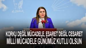 CHP Genel Başkan Yardımcısı Denizli Milletvekili Karaca'dan 15 Mayıs Millli Mücadele Günü mesajı