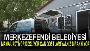 MAMA ÜRETİYOR, BESLİYOR, CAN DOSTLARI YALNIZ BIRAKMIYOR