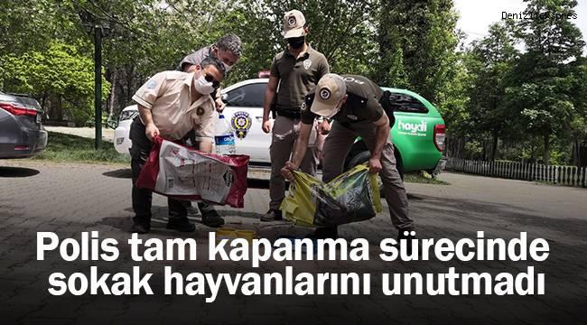 Tam kapanma sürecinde sokak hayvanlarını polis unutmadı
