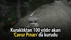 Kuraklıktan 100 yıldır akan 'Cavur Pınarı' da kurudu