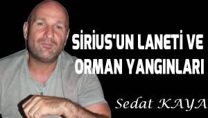 SİRİUS'UN LANETİ VE ORMAN YANGINLARI