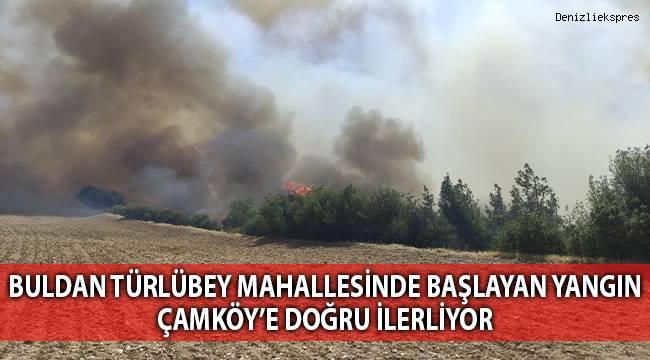 Orman yangını bir mahalleyi tehdit ediyor