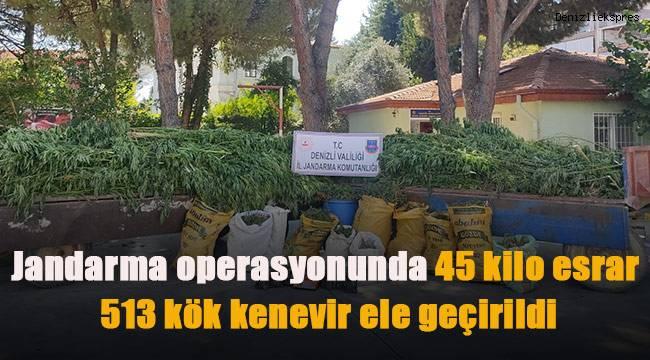 Jandarma operasyonunda 45 kilo esrar, 513 kök kenevir ele geçirildi